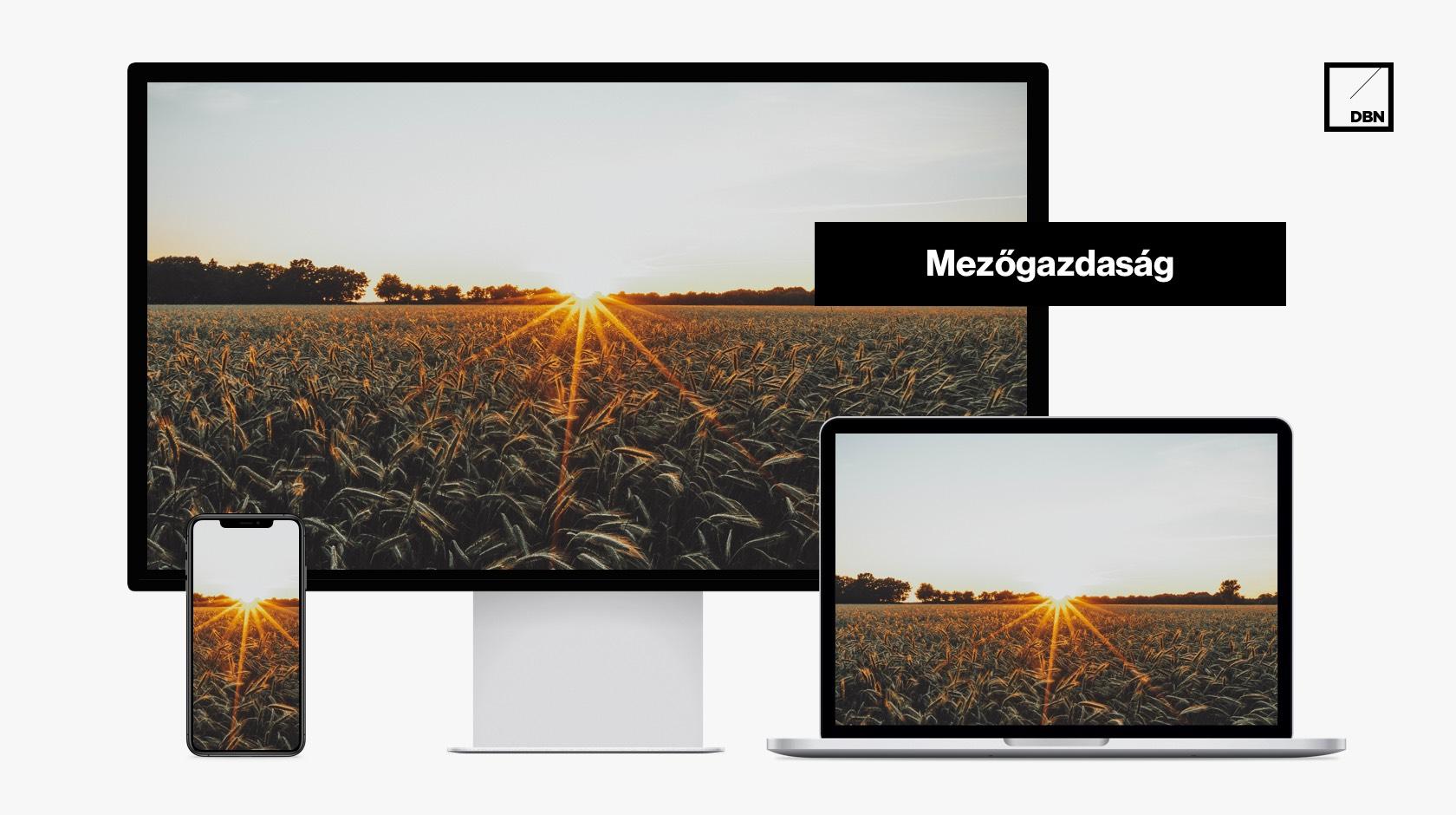Mezőgazdaság, agrár weboldal készítés